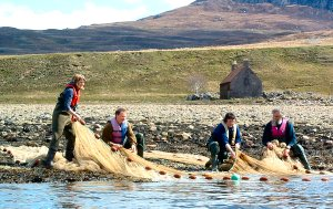 Sweep netting for sea trout at Kildonan Bay, Little Loch Broom