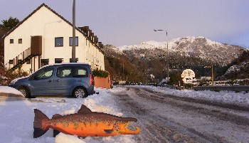 5 Jan '10: WRFT office, vehicle and replica of ~35lb Ewe salmon found in Jan 2003 (by Robin Ade)