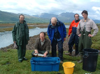 The sea lice monitoring team with sea trout of 43cm by mouth of River Carron.